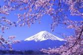 日本旅游之长安辩机的东京攻略一
