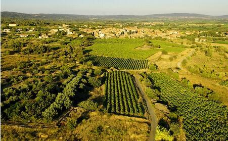 葡萄牙投资移民享受庄园生活